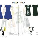 Color trail ny 2