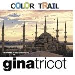 Color trail ny 3